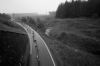 snake peloton<br /> <br /> 2013 Tour of Britain<br /> stage 1: Peebles - Drumlanrig Castle, 209km
