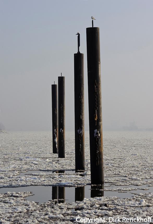 Duckdalben auf der vereisten Elbe, Hamburg-Blankenese,  Deutschland