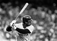 Jim Rice of the Boston Red Sox during a 1988 season game at Anaheim Stadium,in Anaheim,California.(Larry Goren/Four Seam Images)