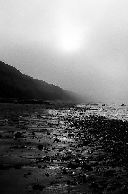 Fog No. 2, Crystal Cove State Park , CA. 35mm film