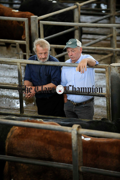 Joe Falsey and Brendan Dillon of Cooraclare meet at the Ennis Mart Show and Sale for weanling Belgian Blues and Limousins. Photograph by John Kelly.