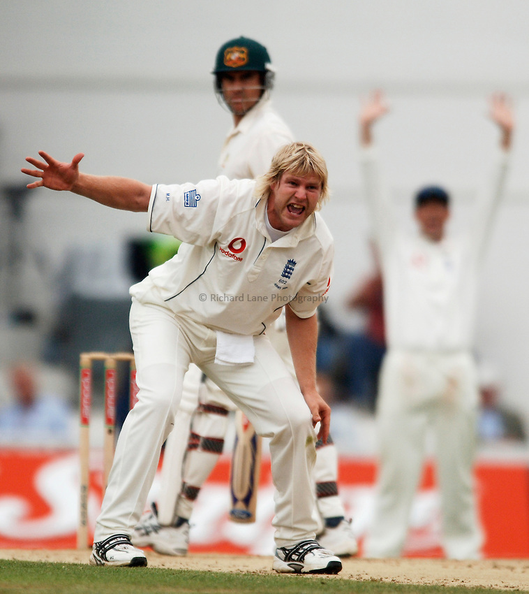 Photo: Glyn Thomas..England v Australia. nPower Test Series. The Ashes 2005..10/09/2005..England's Matthew Hoggard appeals.