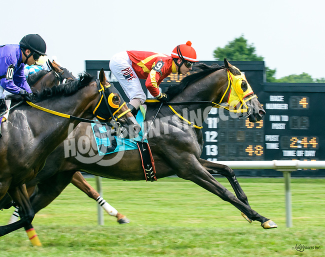 King Gatto winning at Delaware Park on 7/22/17