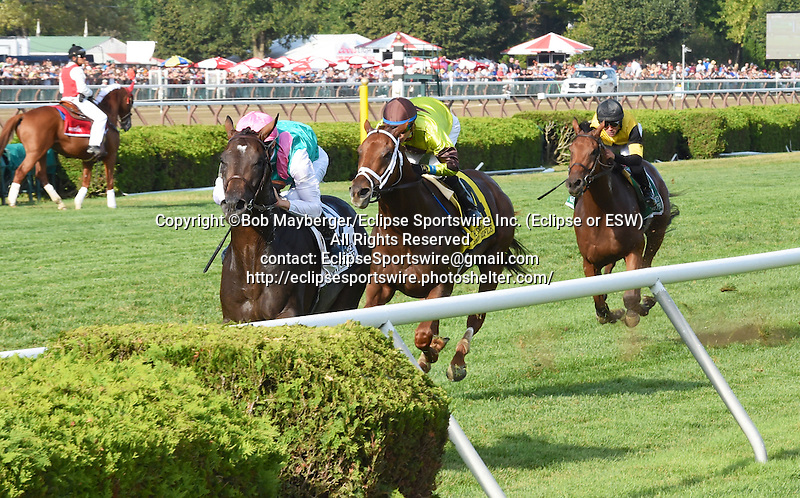 Flintshire (no. 2), ridden by Vincent Cheminaud and trained by Andre Fabre, wins the 41st running of the grade 1 Sword Dancer Invitational Stakes for three year olds and upward on August 29, 2015 at Saratoga Race Course in Saratoga Springs, New York. (Bob Mayberger/Eclipse Sportswire)