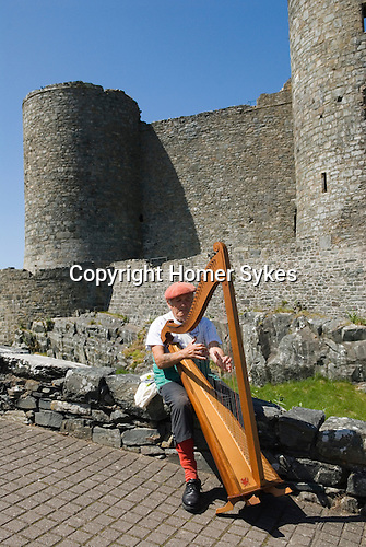 Welsh harp player Harlech Castle. Gwynedd North Wales UK.