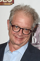 HOLLYWOOD, CA - JULY 20: Jeff Perry at the opening of 'Cabaret' at the Pantages Theatre on July 20, 2016 in Hollywood, California. Credit: David Edwards/MediaPunch