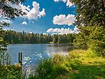 Wigierski Park Narodowy - ścieżka edukacyjna &quot;Suchary&quot;, Polska<br /> Wigry National Park - educational trail &quot;Suchary&quot;, Poland