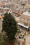 Israel, Jerusalem. View of the Old City from the Austrian Hospice