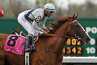 Flashy Dresser with Luis Contreras , trained by owner Fred Seitz, win the 28th running of the Rushaway Stakes at Turfway Park in Florence, Kentucky on Saturday March 24, 2012.