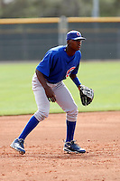 Junior Lake - Chicago Cubs - 2009 spring training.Photo by:  Bill Mitchell/Four Seam Images