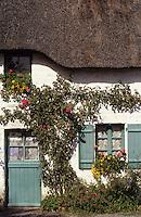 Europe/France/Pays de la Loire/44/Loire-Atlantique/Parc Naturel Régional de Brière/Kerhinet: Chaumière - Détail de la porte d'entrée et fenêtre de la façade