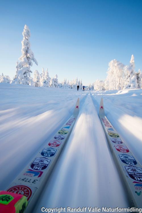 Skiløper på vei ned utforkjøring. ---- Skis in skiing tracks.