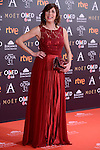 Pilar Ordoñez attends to the Red Carpet of the Goya Awards 2017 at Madrid Marriott Auditorium Hotel in Madrid, Spain. February 04, 2017. (ALTERPHOTOS/BorjaB.Hojas)