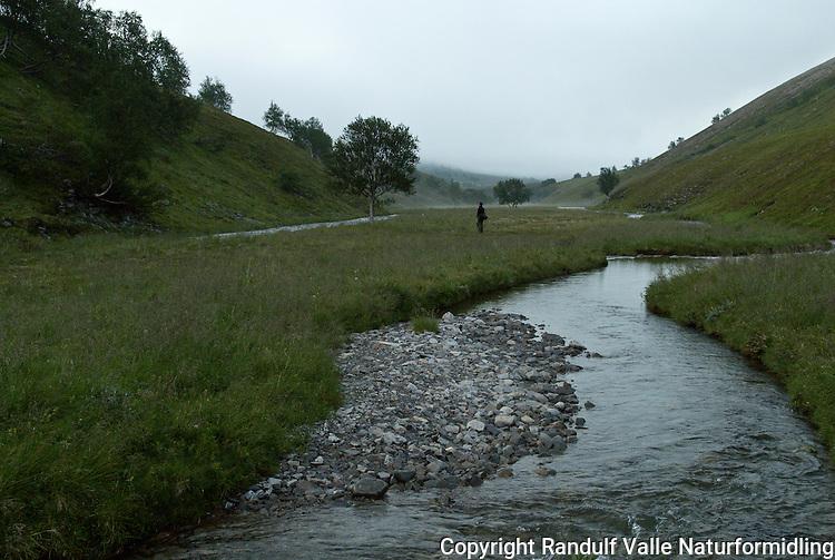 Nattetåke langs liten elv. ---- Mist along small river.