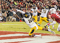 Stanford Cardinal vs Cal Bears, November 21, 2015