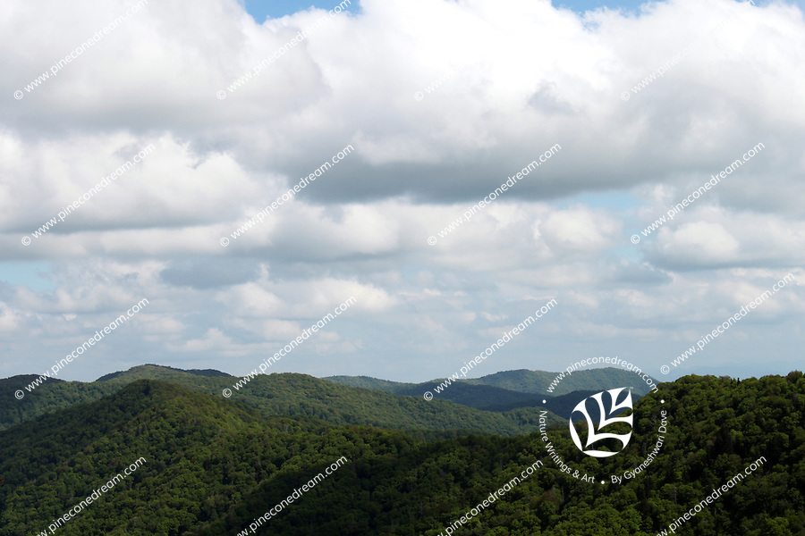The landscape view of the great smoky mountains range and the cloudy sky above.