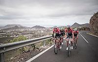 Team Trek-Segafredo winter training camp with Alberto Contador & Fabio Felline (ITA/Trek-Segafredo) up the Tiede Volcano in Tenerife<br /> <br /> january 2017, Tenerife/Spain