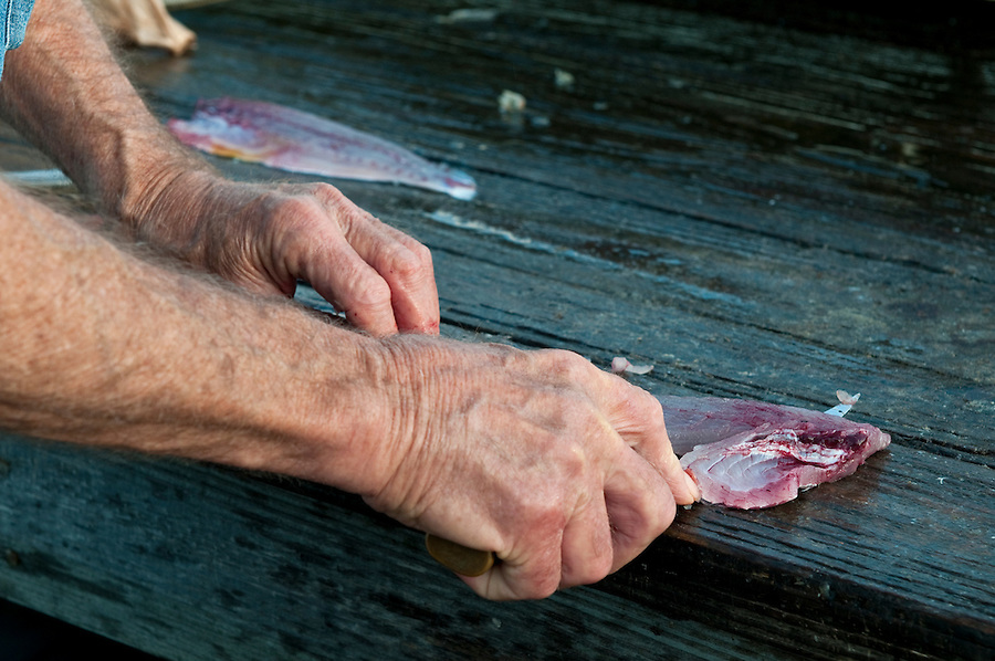Mature fisherman cleans the fish in the dock.