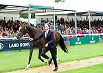 30th August 2017. Ludwig Svennerstal (SWE) riding Balham Mist during the First Horse Inspection of the 2017 Burghley Horse Trials, Stamford, United Kingdom. Jonathan Clarke/JPC Images