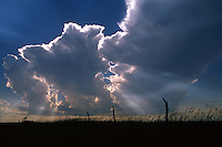 Towering cumulus and young cumulonimbus ram their silver-lined crowns ever taller as crepuscular rays spread between developing thunderstorms over northern Kansas in May.