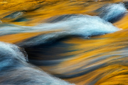 Reflected golden light of Autumn colors in late afternoon in this abstract composition along the Little River, Smoky Mountains.