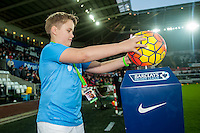 Mascot during the Barclays Premier League match between Swansea City and West Ham United played at the Liberty Stadium, Swansea  on December 20th 2015