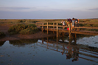 Stiffkey, Norfolk, England, 07/08/2009..Family fishing for crabs in Stiffkey salt marshes.