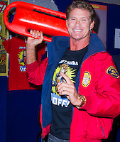 The HOFF @ supanova