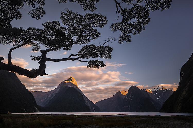 Early morning light touches the top of Mitre Peak in Milford Sound, Fiordland National Park, New Zealand