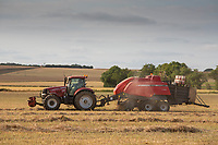 Baling oilseed rape straw<br /> &copy;Tim Scrivener Photographer 07850 303986<br />      ....Covering Agriculture In The UK....