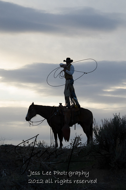 Cowboy roping Cowboys working and playing. Cowboy Cowboy Photo Cowboy, Cowboy and Cowgirl photographs of western ranches working with horses and cattle by western cowboy photographer Jess Lee. Photographing ranches big and small in Wyoming,Montana,Idaho,Oregon,Colorado,Nevada,Arizona,Utah,New Mexico.