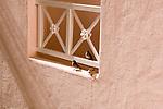Birds siting on a veranda, Pueblo Bonito Rose' resort, Cabo San Lucas, Baja California, Mexico