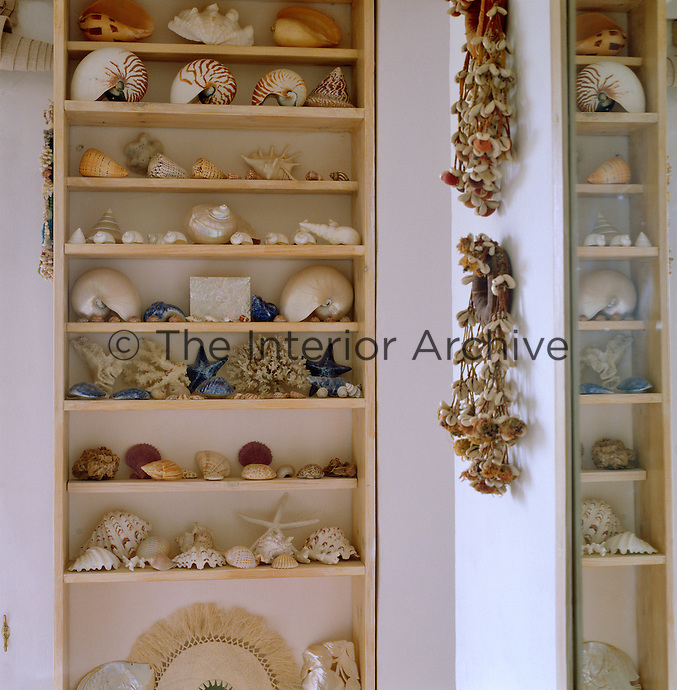 Narrow shelves of beautiful shells occupy a wall in a country bathroom