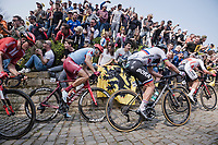 Peter SAGAN (SVN/BORA-Hansgrohe)up the infamous Kapelmuur /Muur van Geraardsbergen<br /> <br /> 103rd Ronde van Vlaanderen 2019<br /> One day race from Antwerp to Oudenaarde (BEL/270km)<br /> <br /> ©kramon