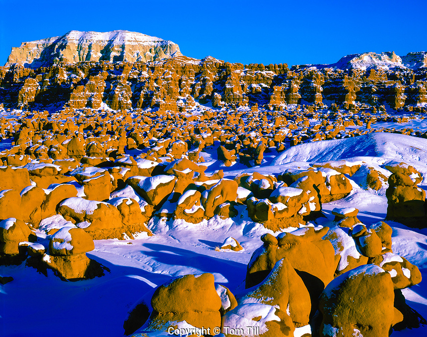 Snow on goblin formations, Goblin Valley State Park, Utah  Entrada sandstone sunset