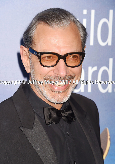 BEVERLY HILLS, CA - FEBRUARY 19: Actor Jeff Goldblum attends the 2017 Writers Guild Awards L.A. Ceremony at The Beverly Hilton Hotel on February 19, 2017 in Beverly Hills, California.
