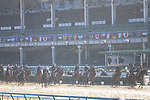November 1, 2018: Horses train on the track at Churchill Downs during preparations for the Breeders' Cup on November 1, 2018 in Louisville, Kentucky. Kaz Ishida/Eclipse Sportswire/CSM