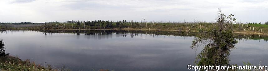 Panoramic view of glassy Bellis Lake, Alberta.