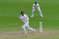 Tom Westley in batting action for Essex during Glamorgan CCC vs Essex CCC, Specsavers County Championship Division 2 Cricket at the SSE SWALEC Stadium on 23rd May 2016