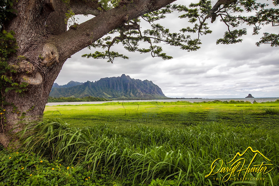 Kualoa Ridge and Mokolii Island at Kaneohe Bay on the Island of Oaho, Hawaii