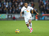 4th November 2017, Liberty Stadium, Swansea, Wales; EPL Premier League football, Swansea City versus Brighton and Hove Albion; Luciano Narsingh of Swansea City on the ball