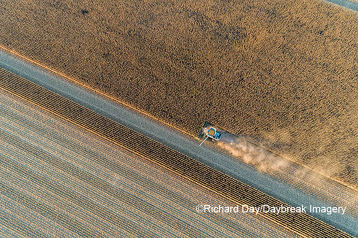 63801-13109 Harvesting corn in fall-aerial  Marion Co. IL