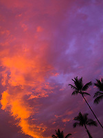 Silhouettes of palm trees against a vibrant sunset, Big Island.