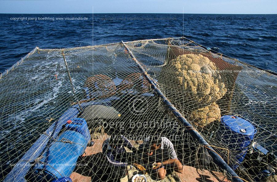 TUNISIA island Kerkennah, sponge diver, fishing boat Monastir II, sponge is a sea animal, diver collect the spong from sea ground in 20 Meter depth, after washing and cleaning the skeleton is sold as bath sponge / TUNESIEN Insel Kerkenna, Schwammtaucher Monastir II im Mittelmeer, der Schwamm ist ein Meerestier, Taucher holen den Schwamm vom Meeresboden aus ca. 20 Meter Tiefe, nach Auswaschen der Zellen erscheint das Skelett, das als Badeschwamm vermarket wird