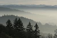 Mt. Baldy - Ridgeline