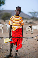 KENYA, Marsabit, Samburu village Hargura, young shepherd with goats / KENIA, Marsabit, Samburu Dorf Hargura, Ziegenherde kehrt abends zurueck ins Dorf, junger Hirte