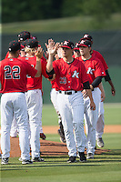 Yelmison Peralta (33) of the Kannapolis Intimidators celebrates with teammates after their victory over the Lakewood BlueClaws at CMC-Northeast Stadium on May 17, 2015 in Kannapolis, North Carolina.  The Intimidators defeated the BlueClaws 4-1.  (Brian Westerholt/Four Seam Images)