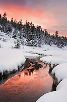 """RED DAWN"" -- Sunrise following a fierce snowstorm in the lower country of Rocky Mountain National Park."