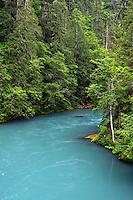 Elwha River, Olympic National Park, Olympic Peninsula, Clallam County, Washington, USA