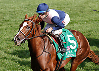 10-07-17 First Lady Stakes Keeneland